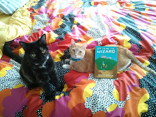 Trouble and Cheddar and a book!