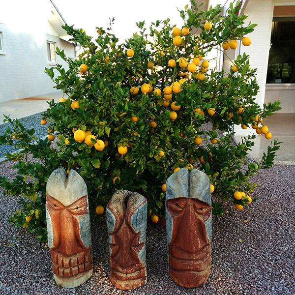 tiki gods and lemons