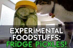Experimental Foodstuffs: Fridge Pickles!